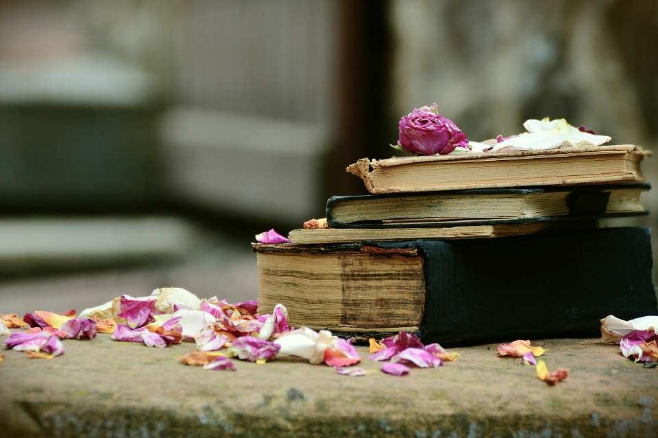romanzi da leggere assolutamente
